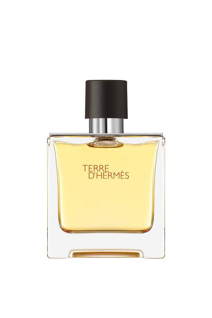 Hermès Terre d'Hermès Άρωμα 75 ml 0