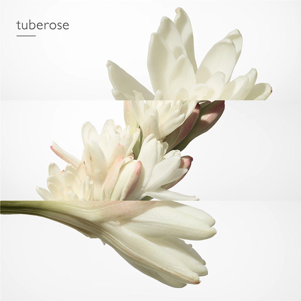 Hermès Twilly d'Hermès Eau de Parfum 50 ml  3