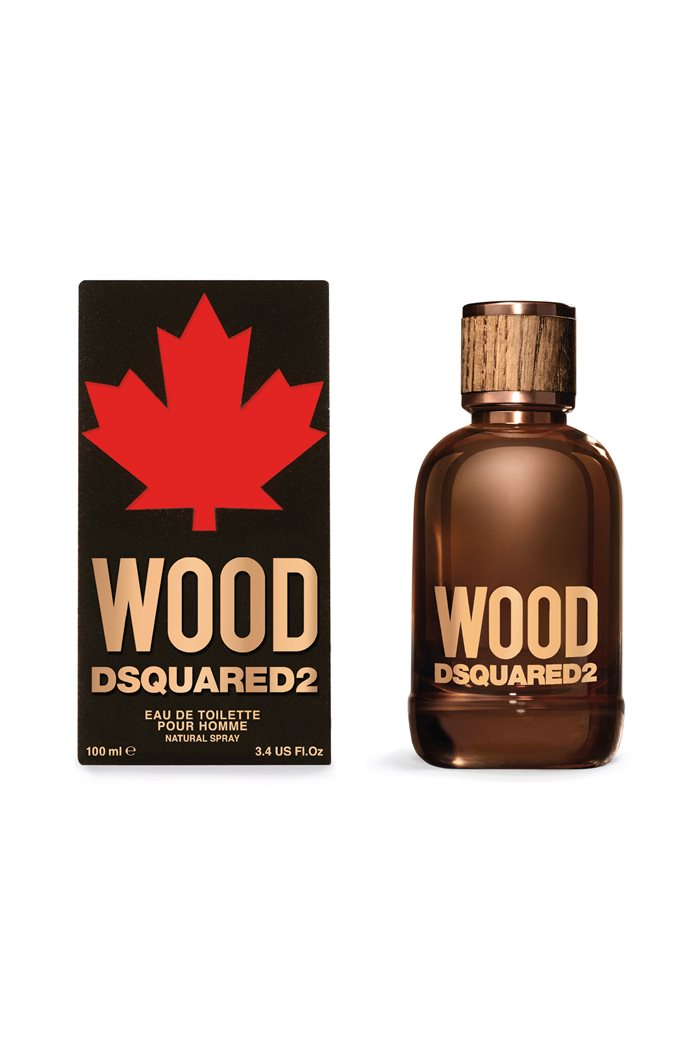 Dsquared2 Wood for Him EdT 100 ml 0