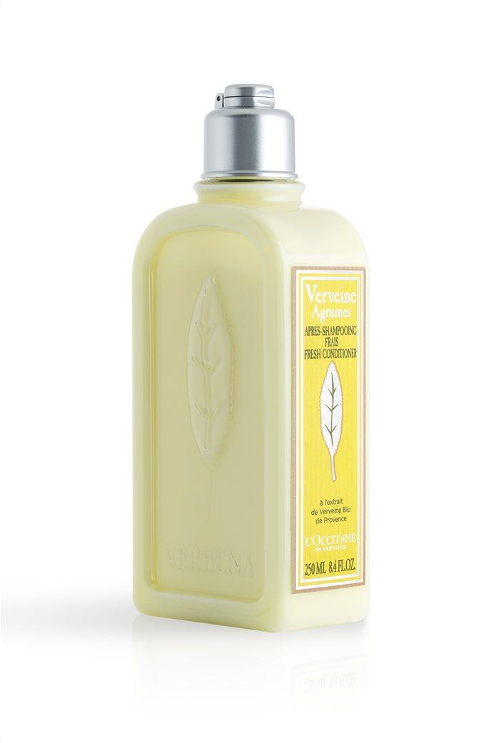 L'Occitane Verbena Citrus Conditioner 250 ml 0