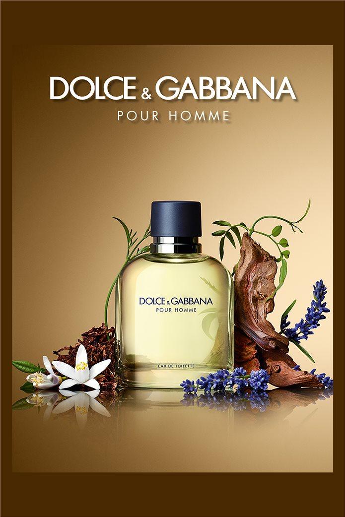 Dolce & Gabbana Pour Homme Eau de Toilette 75 ml 2