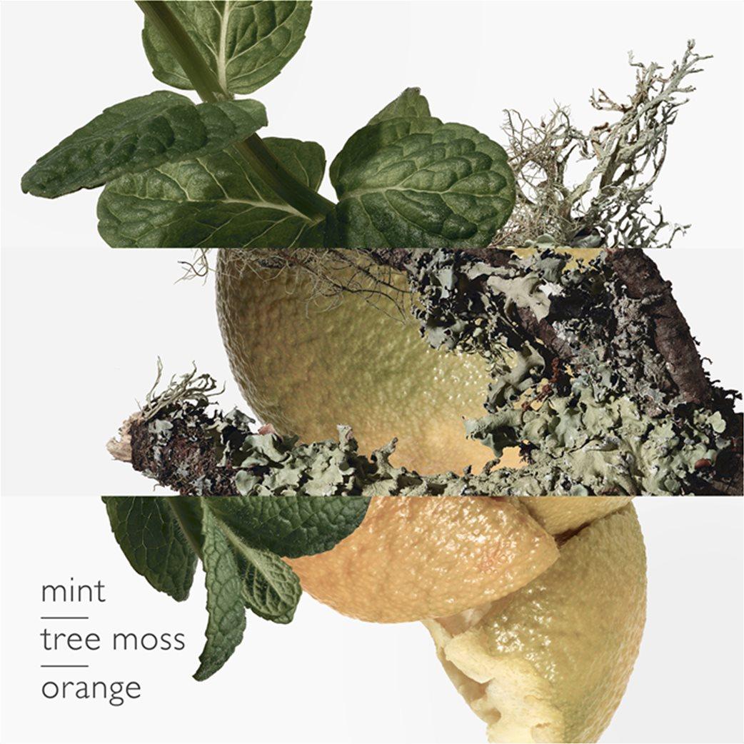 Hermès Eau d'Orange Verte Eau de Cologne 50 ml  1