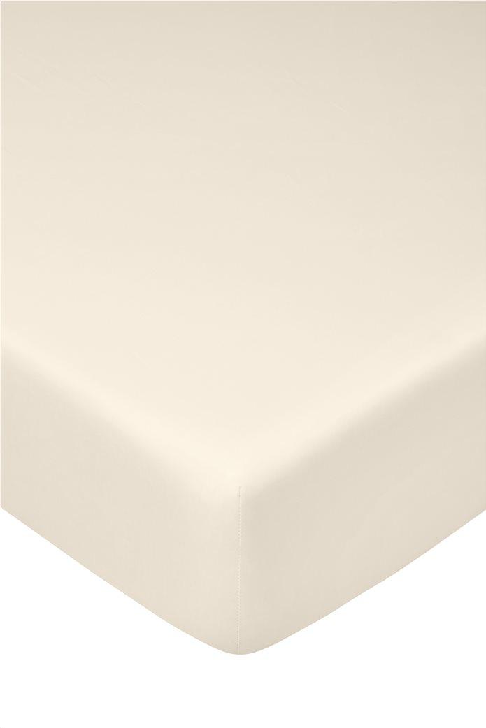 Coincasa σεντόνι μονόχρωμο με λάστιχο 160 x 200 cm Μπεζ 0