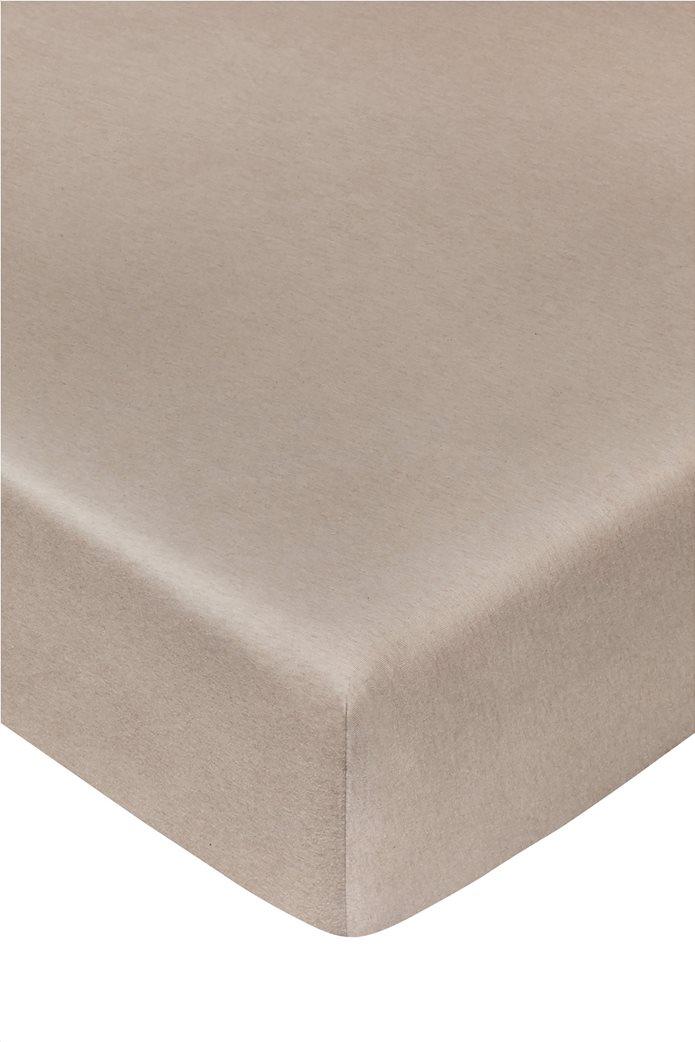 Coincasa σεντόνι μονόχρωμο με λάστιχο 200 x 90 cm Μπεζ 0