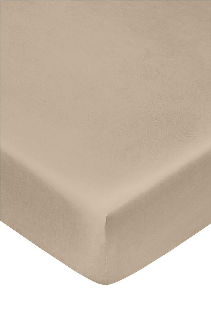 """Coincasa σεντόνι μονόχρωμο king size """"Zefiro"""" 180 x 210 cm Μπεζ 0"""