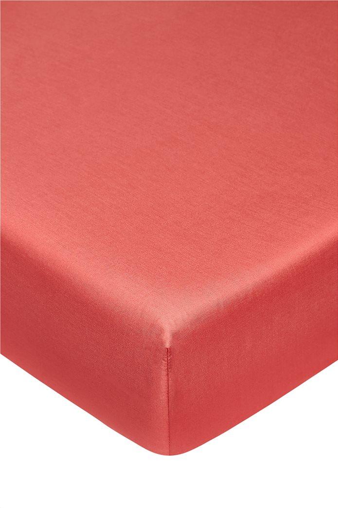 Coincasa διπλό σεντόνι μονόχρωμο 160 x 200 cm Κόκκινο 0