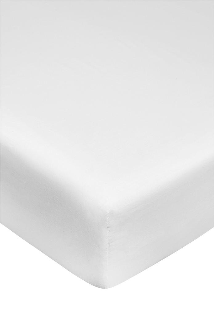Coincasa διπλό σεντόνι μονόχρωμο 165 x 200 cm Λευκό 0