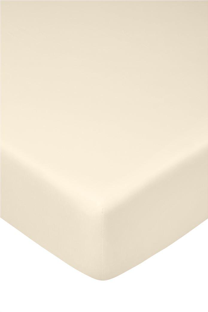 Coincasa σεντόνι μονόχρωμο king size 180 x 210 cm Υπόλευκο 0