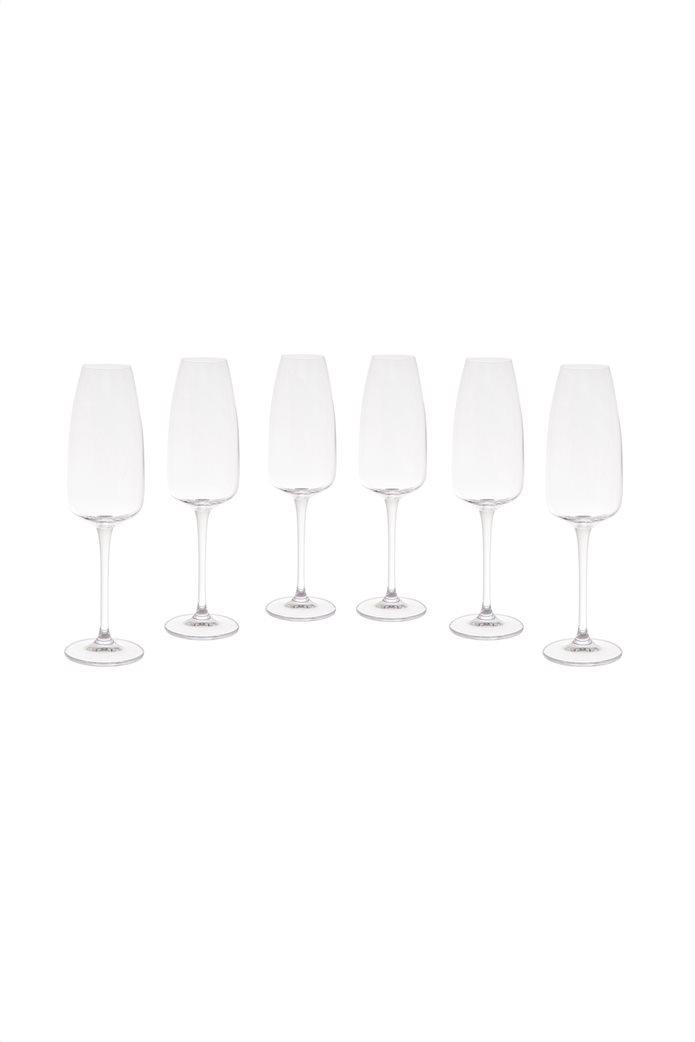 Coincasa σετ από 6 κρυστάλλινα κολωνάτα ποτήρια με στενό χείλος 25 x 4.5 cm Διάφανο 0