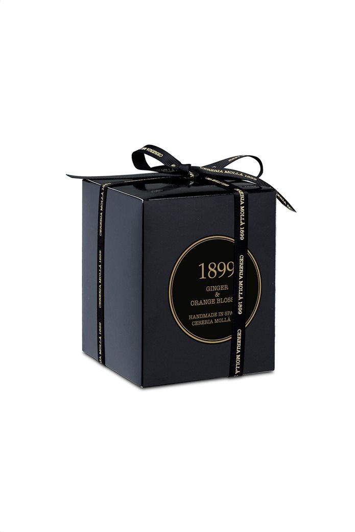 Cereria Mollá 1899 αρωματικό κερί Gold Edition Ginger & Orange Blossom 1