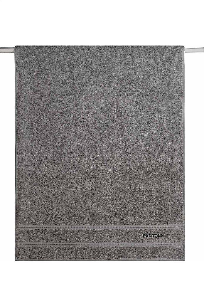 """Kentia πετσέτα προσώπου """"Pantone 0424"""" 50 x 90 cm Γκρι 0"""