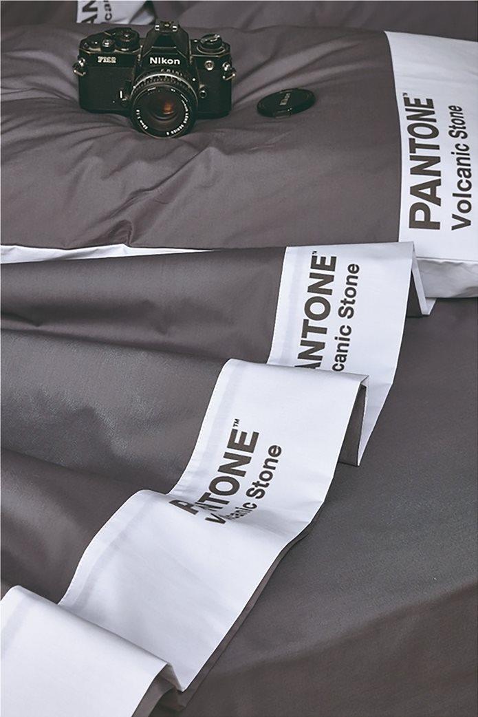 "Kentia σετ υπέρδιπλα σεντόνια ""Pantone 22"" (4 τεμάχια) 0"