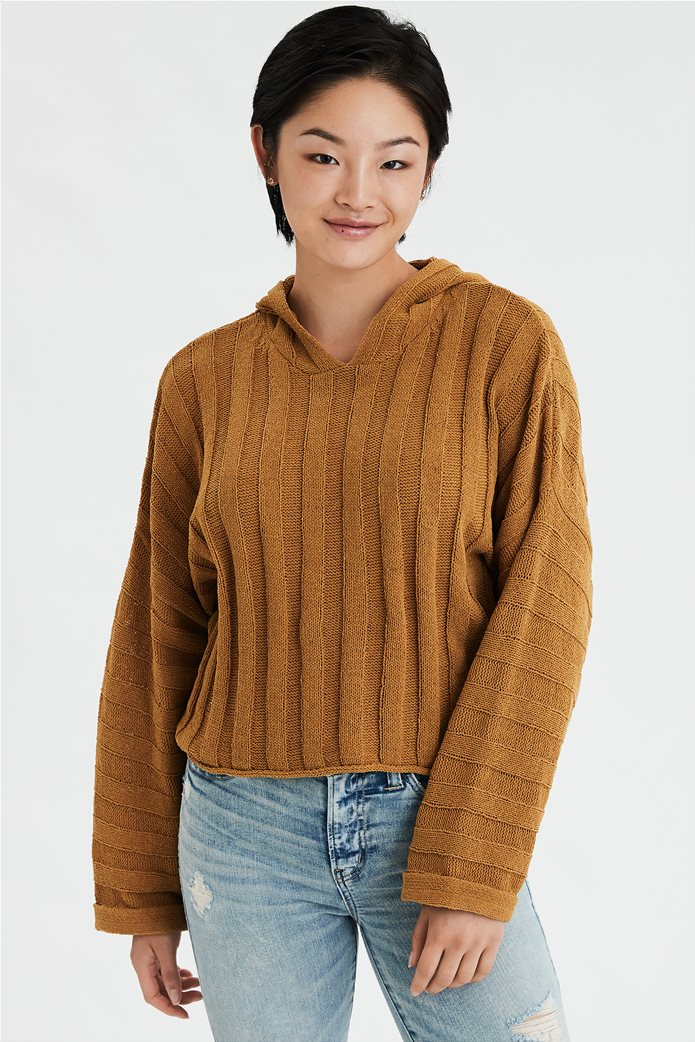 AE Chenille Cropped Hooded Sweater 0