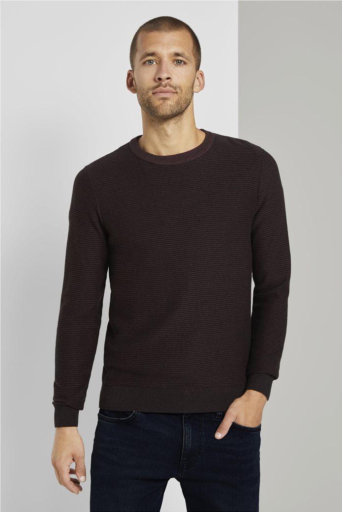 Tom Tailor ανδρικό πουλόβερ ριγέ 0