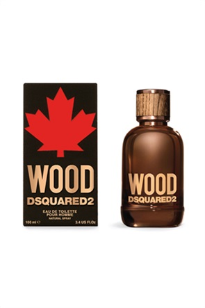 Dsquared2 Wood for Him EdT 100 ml