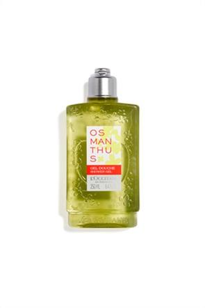 L'Occitane Osmanthus Shower Gel 250 ml