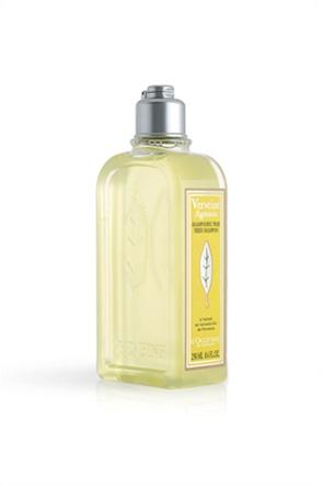 L'Occitane Verbena Citrus Fresh Shampoo 250 ml