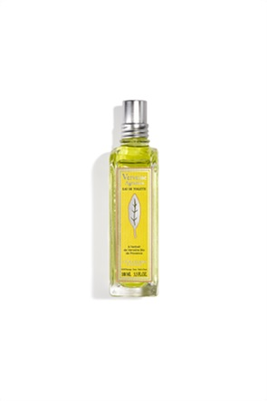 L'occitane Verbena Citrus Eau De Toilette 100 ml